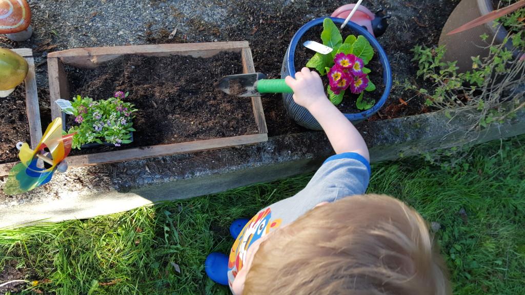 My garden assistant